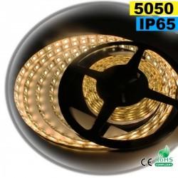 Strip Led blanc chaud léger SMD 5050 IP65 60leds/m 30m