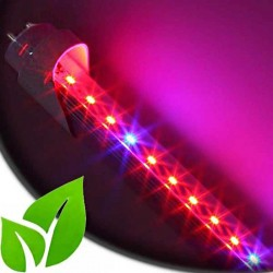 Tube LED Horticole SMD 3528 Longueur 1500mm