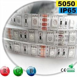 Strip Led RGB SMD 5050 IP65 60leds/m rouleau sur mesure
