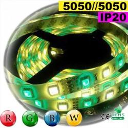 Strip Led RGB-WW IP20 60leds/m SMD 5050 rouleau de 30 mètres
